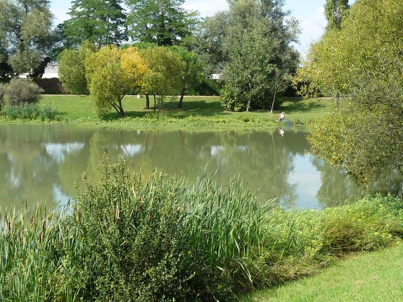 Parcs espaces verts ville de bassens for Piscine de bassens